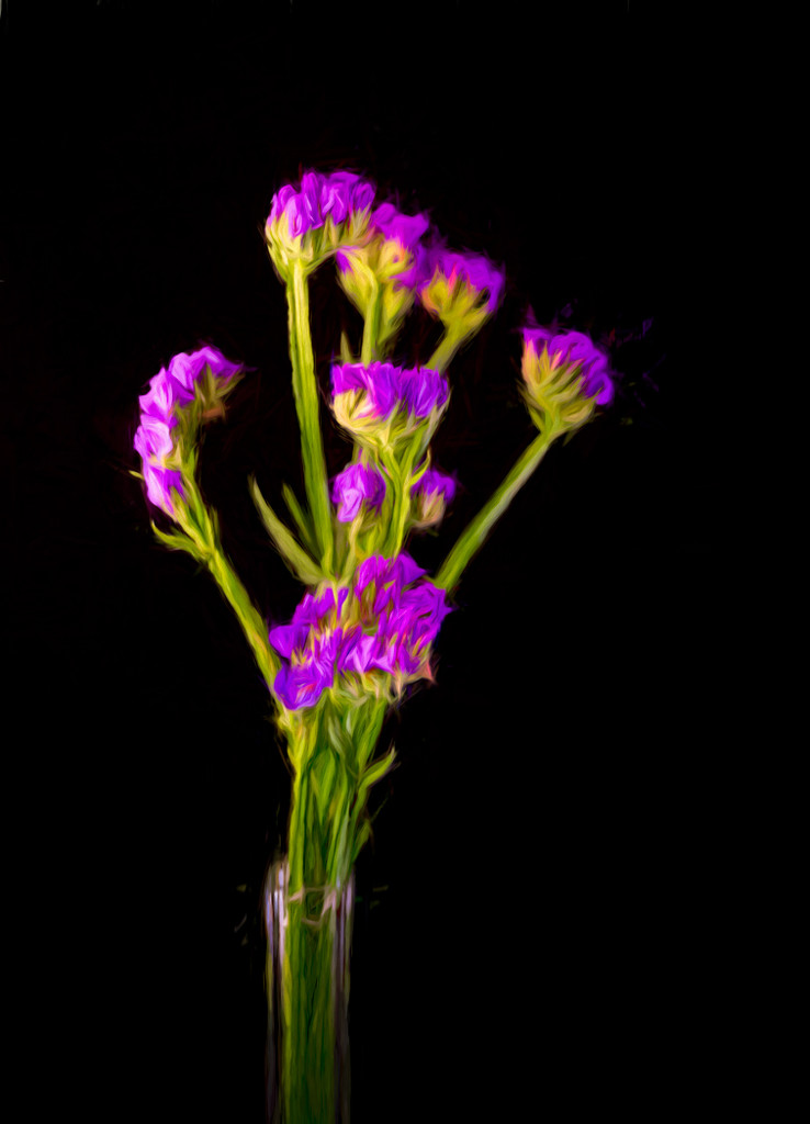 Painterly Purple Statice Dried Flowers  by sprphotos