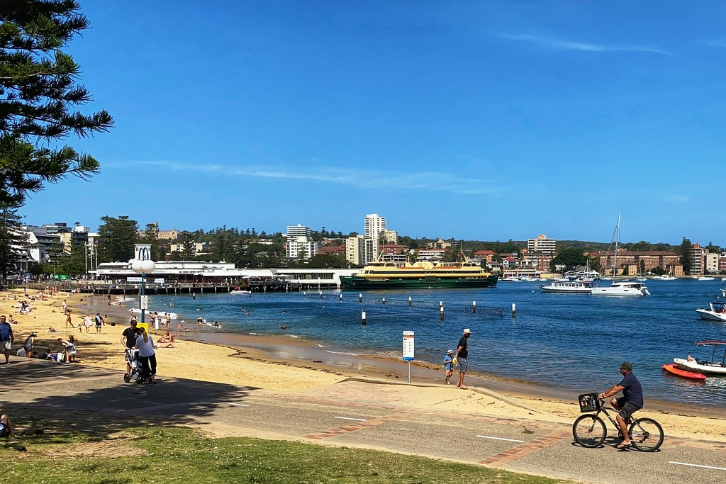 Manly Cove.  by johnfalconer