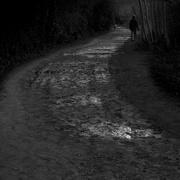 6th Mar 2021 - The path ahead