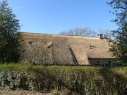 8th Mar 2021 - thatched roof