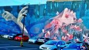 8th Mar 2021 - Dunedin Wall Art