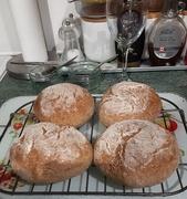 8th Mar 2021 - Paul's Wholewheat bread rolls.