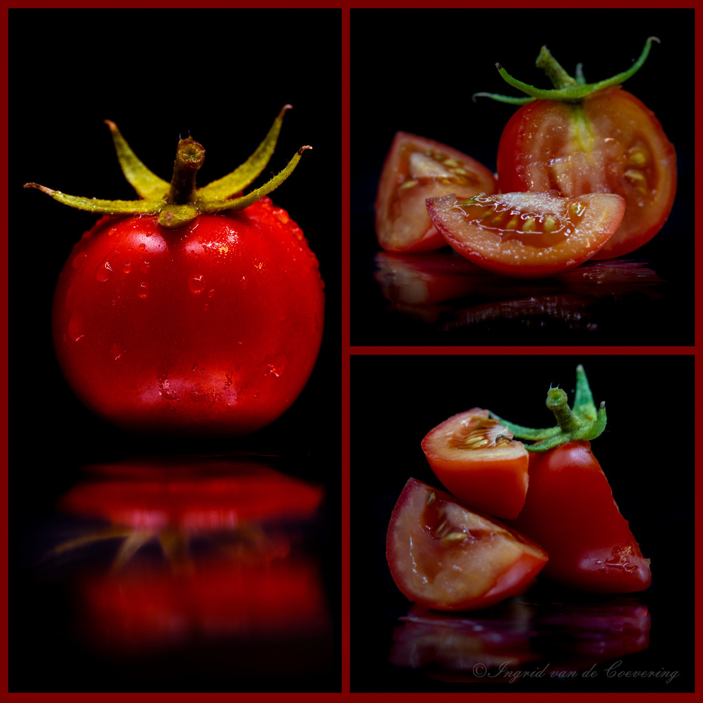 Tomato collage...  by ingrid01