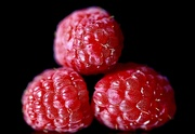 8th Mar 2021 - Red Raspberries