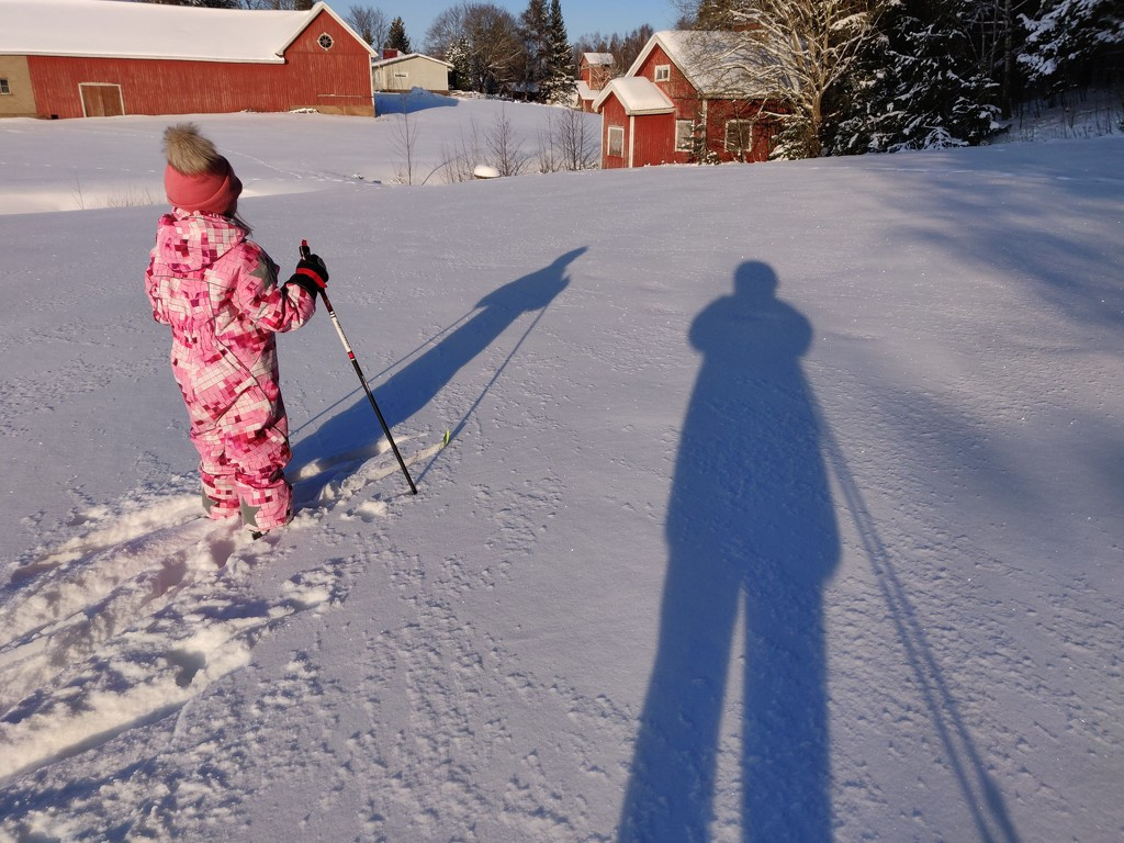 Shadows on the snow IMG_20210204_142523 by annelis