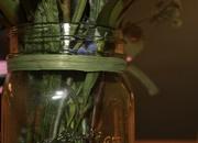 11th Mar 2021 - Green jar, stems & ribbon