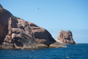 10th Mar 2021 - Schouten Island Cruise (38)