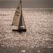 Sparkling seas by swillinbillyflynn