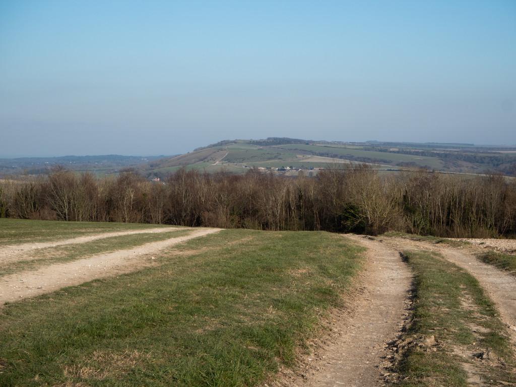 Kithurst Hill from Bury Hill by josiegilbert