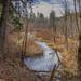 Rock Creek by vickiem