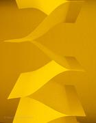 10th Mar 2021 - Yellow Wednesday