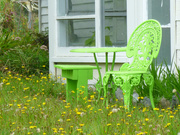 11th Mar 2021 - the green seat