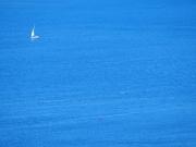 11th Mar 2021 - Water Blue