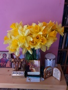 11th Mar 2021 - Golden daffodils and icons