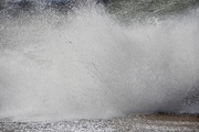 11th Mar 2021 - Big splash