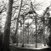 Pinhole bandstand