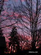 11th Mar 2021 - Surprise Sunset