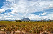13th Mar 2021 - A different view of the Helderberg
