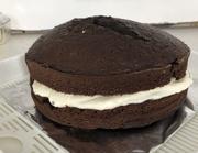 13th Mar 2021 - Chocolate Cake