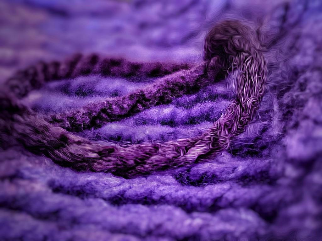 Knitting in Progress by njmom3