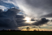 13th Mar 2021 - End of the Storm