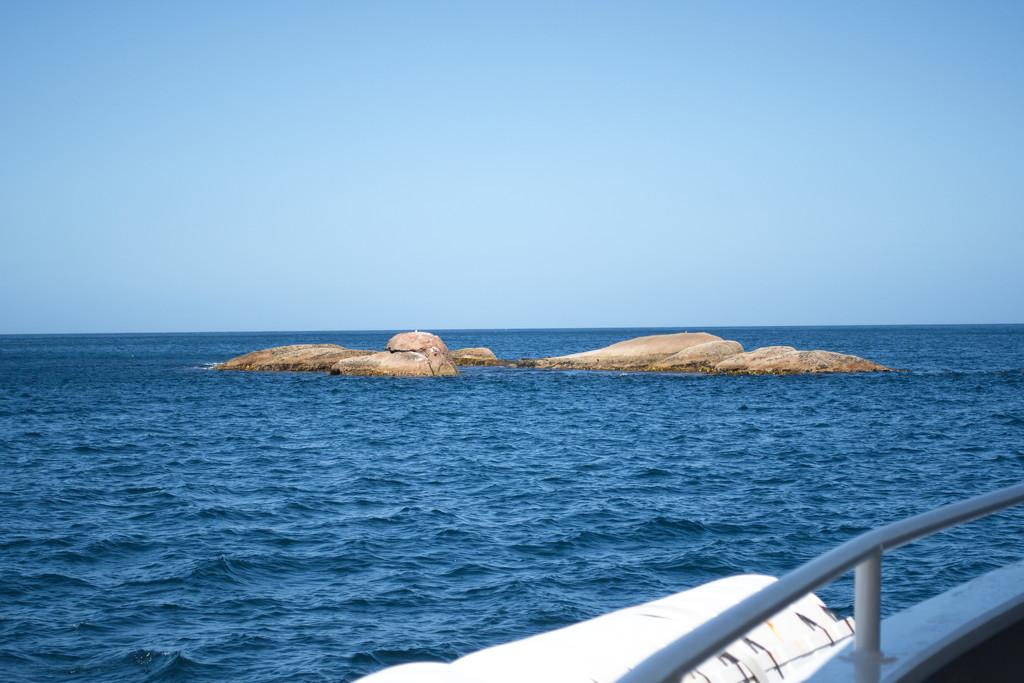 Schouten Island Cruise (42) by kgolab