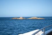 14th Mar 2021 - Schouten Island Cruise (42)