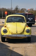 15th Mar 2021 - Love you, Herbie!!!