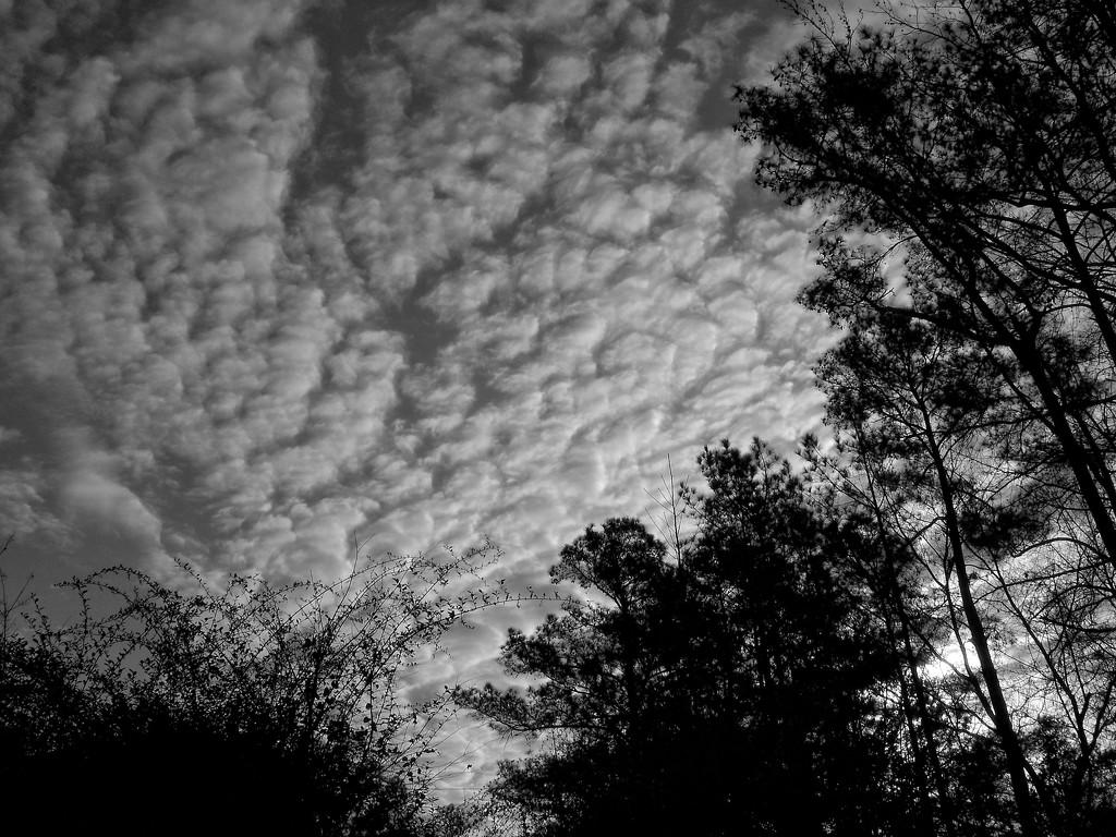 Cloud formations... by marlboromaam