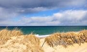 14th Mar 2021 - Sandy Neck Beach