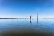 15th Mar 2021 - Lake Mulwala