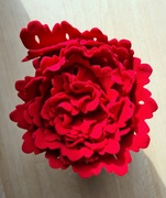 15th Mar 2021 - Red Frilly Blanket