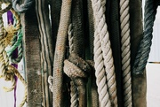 16th Mar 2021 - Rope
