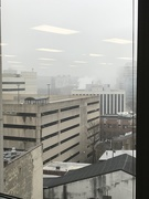 17th Mar 2021 - Foggy