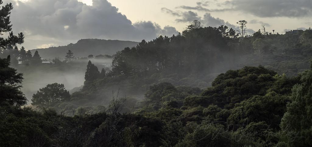 Morning Mist by kipper1951