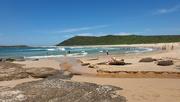 27th Jan 2021 - Moone Beach