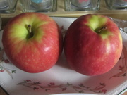 19th Mar 2021 - Two Pink Lady apples.