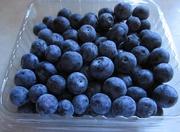 19th Mar 2021 - Blue blueberries