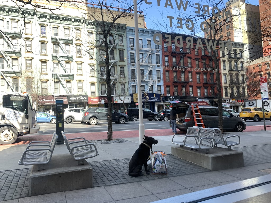 New York City by blackmutts