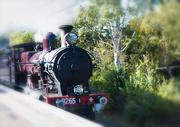 23rd Aug 2019 - Locomotive 3265 through Denistone