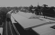 22nd Aug 2019 - Railway Station Blaxland