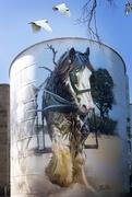 20th Mar 2021 - Painted silo Goorambat