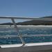Schouten Island Cruise (46)