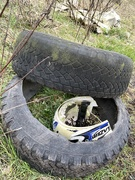 20th Mar 2021 - Two tyres and a bike helmet - obvs
