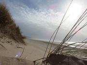 21st Feb 2021 - Dune View