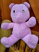 21st Mar 2021 - Pink Teddy
