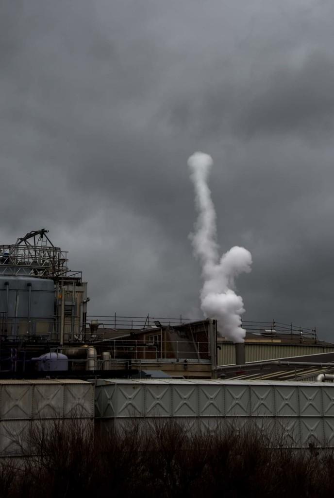 Steam by ilovelenses