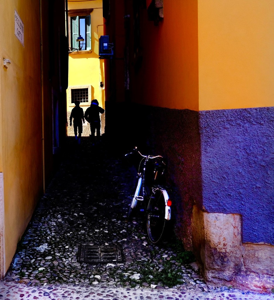 two boys and a bicycle  by caterina