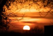21st Mar 2021 - Charles's Lane Sunset