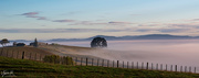 22nd Mar 2021 - Mist in the Waikato